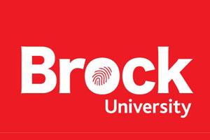 布鲁克大学