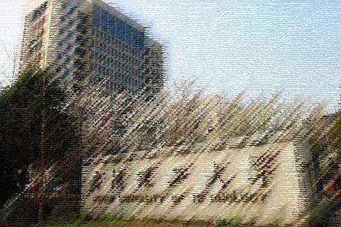 武汉理工大学校园环境